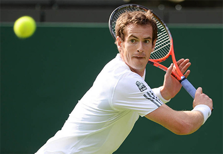 Andy Murray Focus on Wimbledon Victory